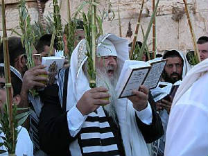 Jews worship in Jerusalem on the holiday of Sukkoth.